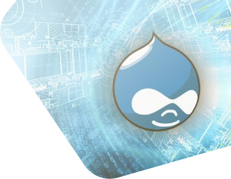 Drupal Web Development _01.png